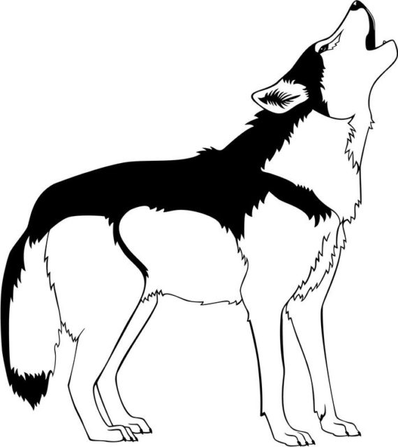 White Wolf clipart #4, Download drawings