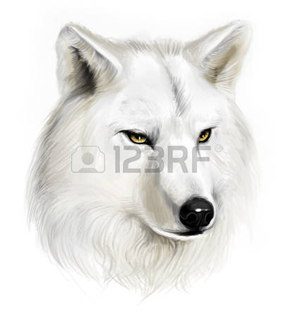 White Wolf clipart #14, Download drawings