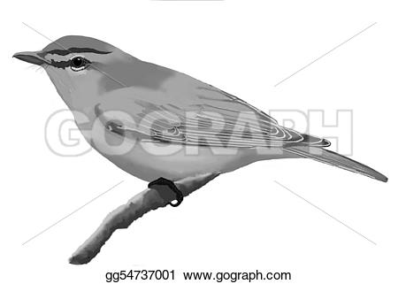 White-eyed Virio clipart #5, Download drawings