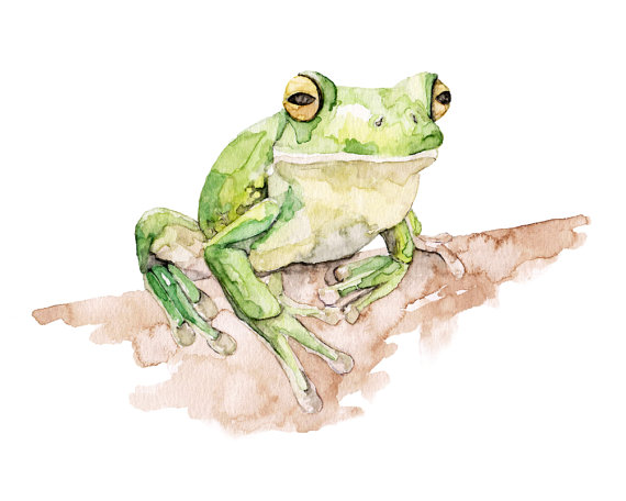 White-lipped Tree Frog svg #10, Download drawings