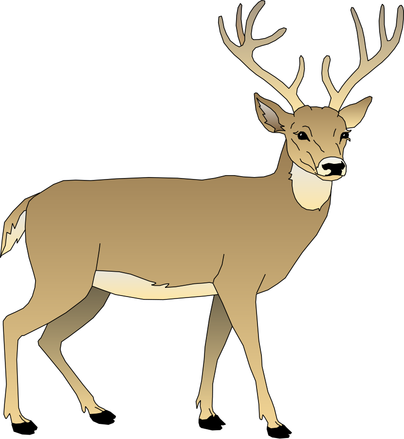 White-tailed Deer clipart #19, Download drawings