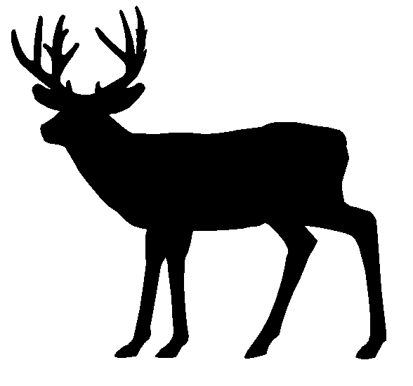 White-tailed Deer clipart #15, Download drawings