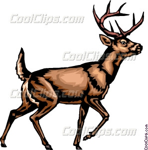 White-tailed Deer clipart #14, Download drawings