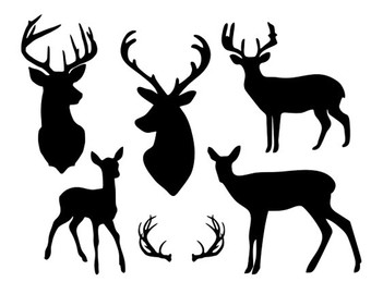 White-tailed Deer svg #10, Download drawings