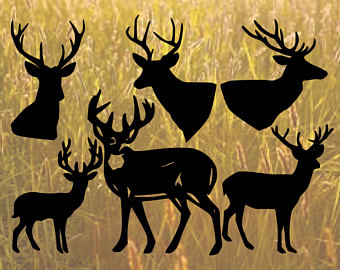 White-tailed Deer svg #3, Download drawings