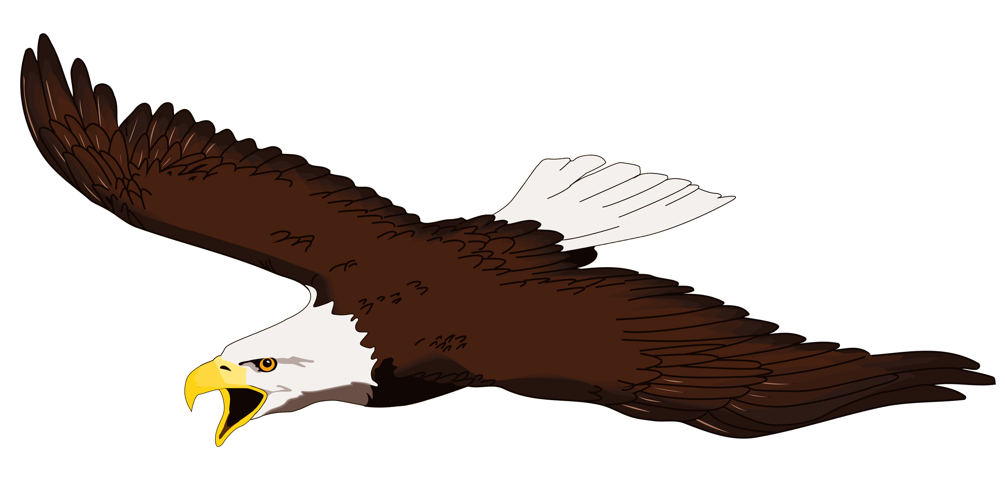 White-tailed Eagle clipart #2, Download drawings