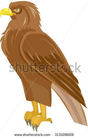 White-tailed Eagle clipart #8, Download drawings