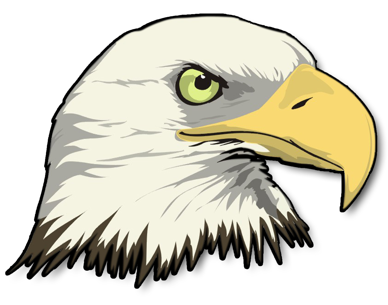 White-tailed Eagle clipart #6, Download drawings