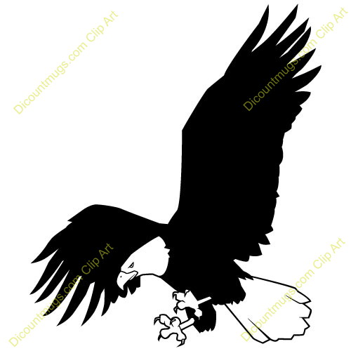 White-tailed Eagle clipart #5, Download drawings