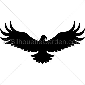 White-tailed Eagle svg #9, Download drawings