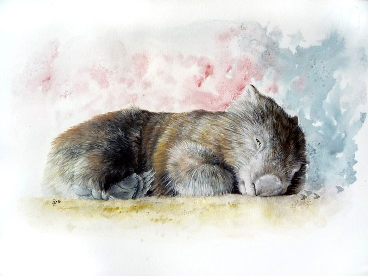 Whopping Wombat clipart #15, Download drawings