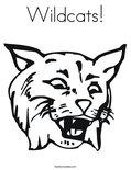 Wildcat coloring #3, Download drawings