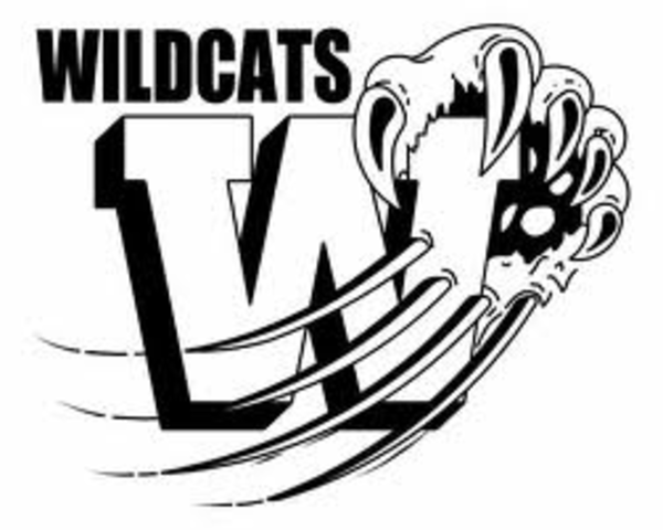 Wildcat coloring #6, Download drawings