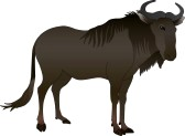 Wildebeest clipart #17, Download drawings