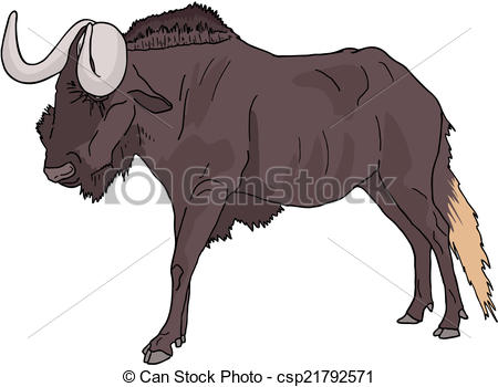 Wildebeest clipart #11, Download drawings
