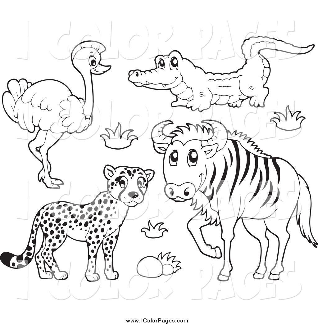 Wildebeest coloring #7, Download drawings
