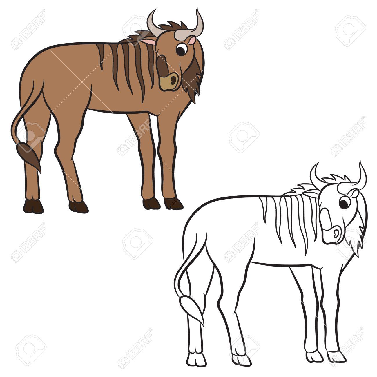 Wildebeest coloring #10, Download drawings