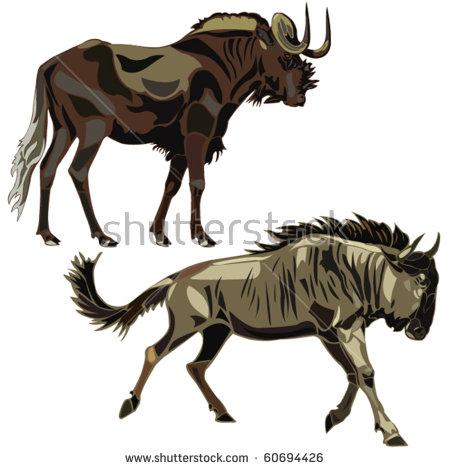 Wildebeest svg #16, Download drawings
