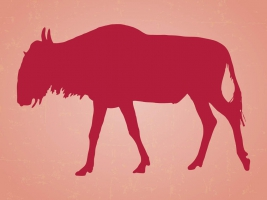 Wildebeest svg #6, Download drawings