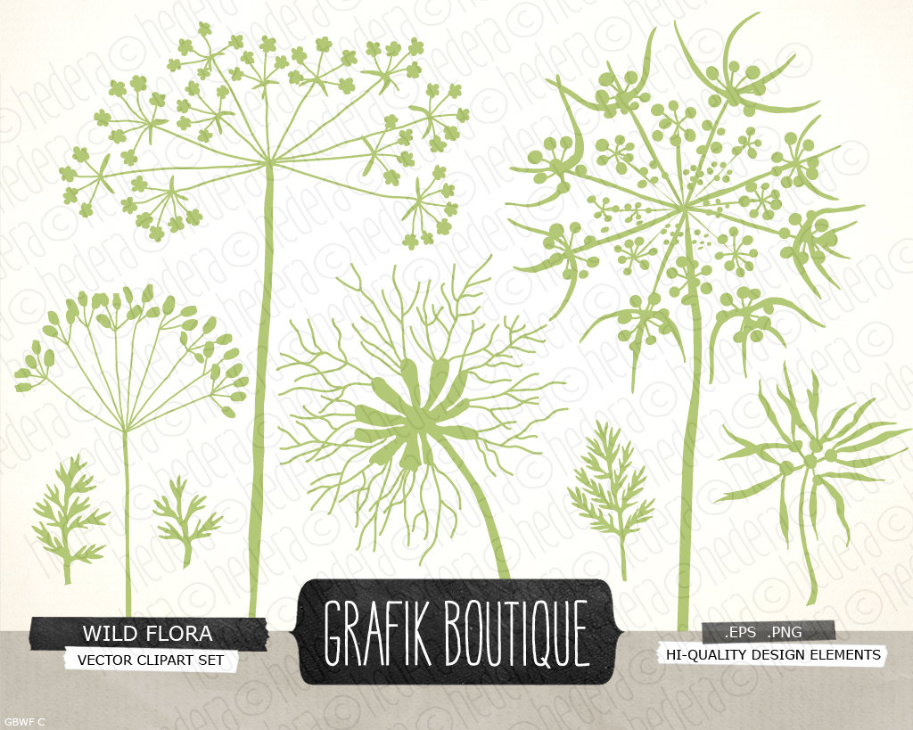 Wildflower clipart #4, Download drawings