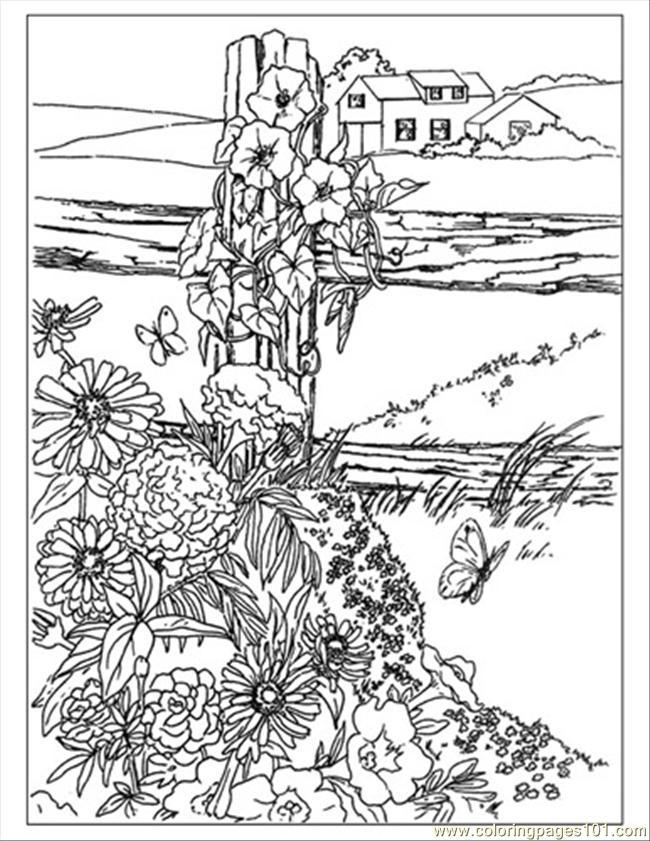 Wildflower coloring #10, Download drawings