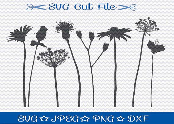 Wildflower svg #19, Download drawings