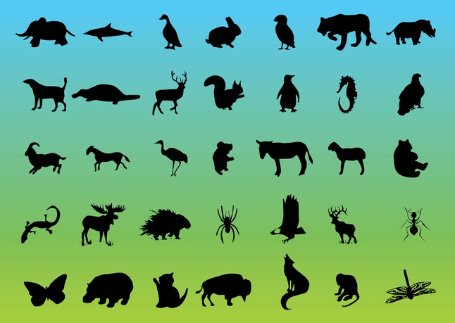 Wildlife clipart #6, Download drawings