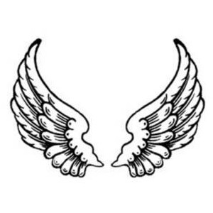 Wings clipart #18, Download drawings