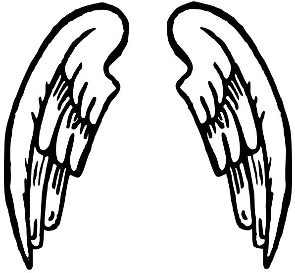 Wings clipart #13, Download drawings