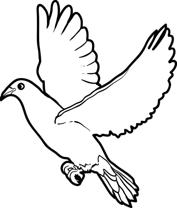 Wings coloring #5, Download drawings
