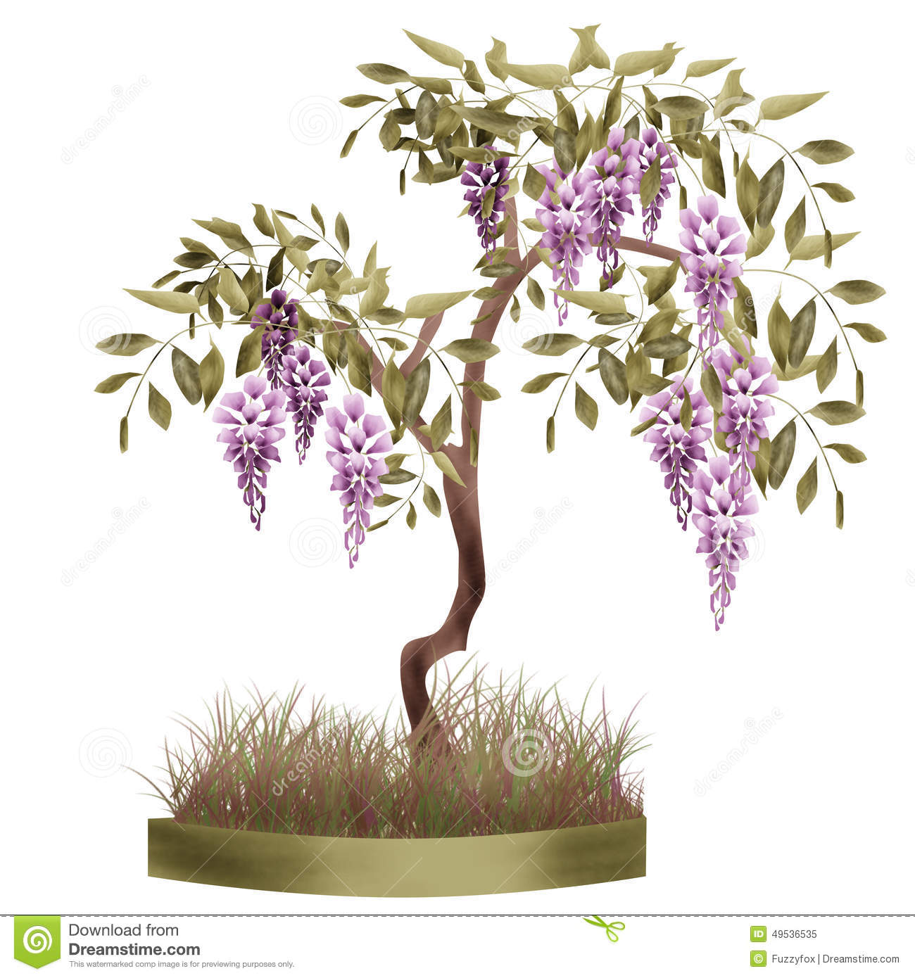 Wisteria clipart #10, Download drawings