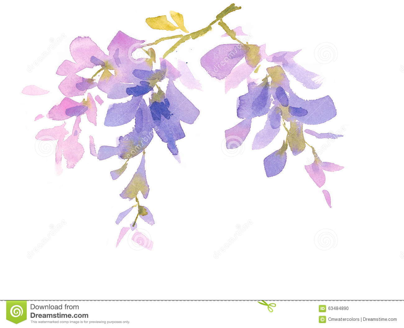 Wisteria clipart #12, Download drawings