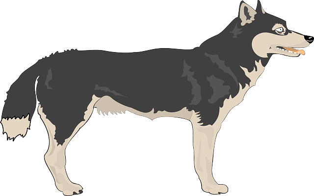 Wolf clipart #16, Download drawings