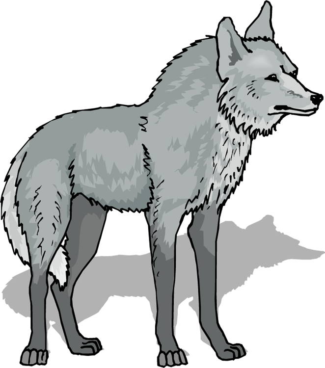 Wolf clipart #1, Download drawings