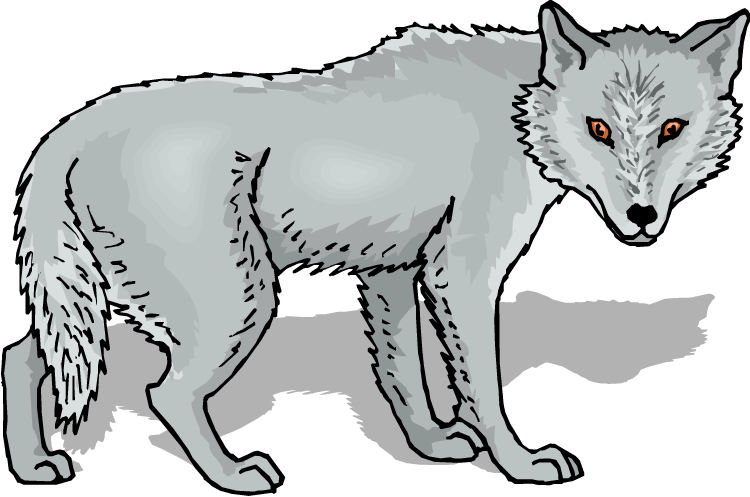 Mexican Gray Wolf clipart #20, Download drawings