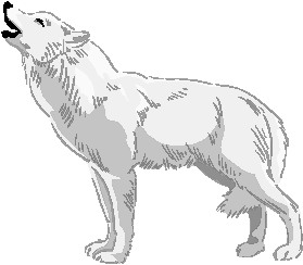 White Wolf clipart #16, Download drawings