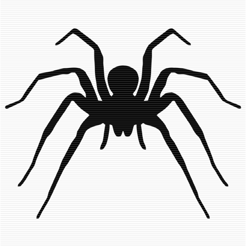 Wolf Spider clipart #17, Download drawings