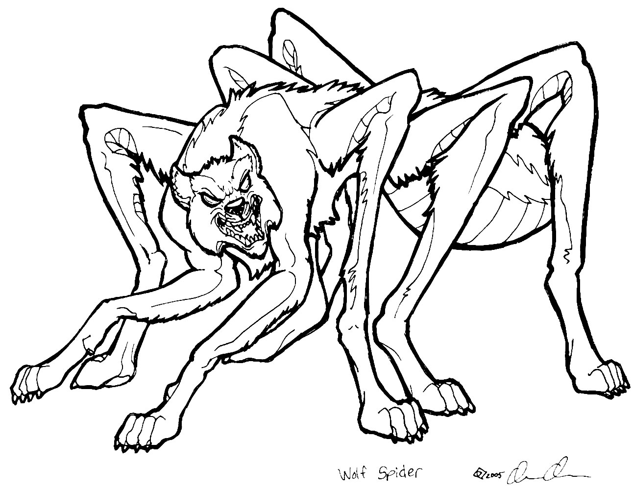 Wolf Spider coloring #15, Download drawings
