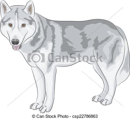 Wolfdog clipart #1, Download drawings