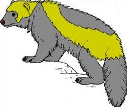 Wolverine clipart #13, Download drawings