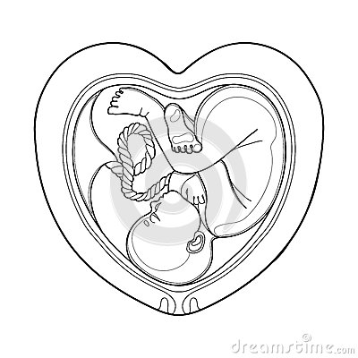 Womb coloring #20, Download drawings