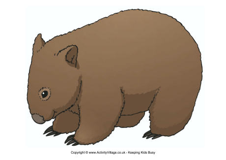 Wombat clipart #3, Download drawings