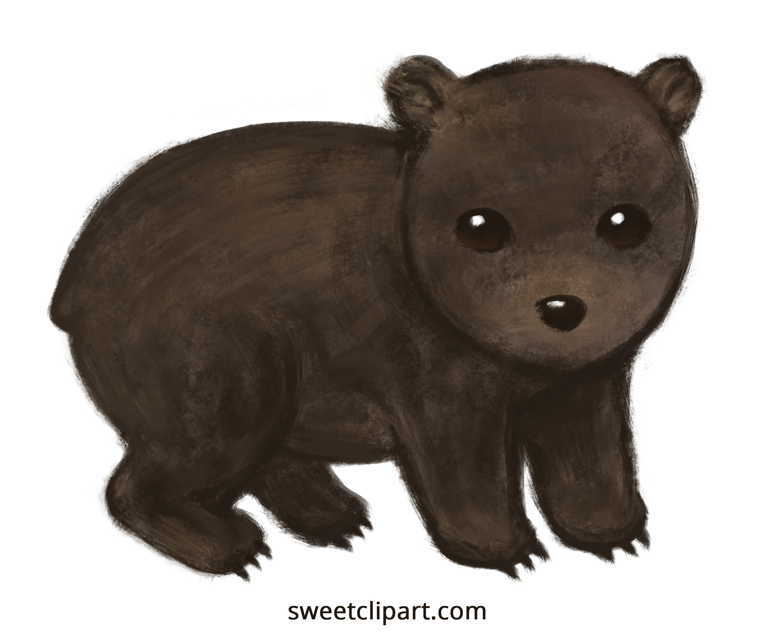 Wombat clipart #2, Download drawings