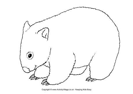 Wombat coloring #1, Download drawings