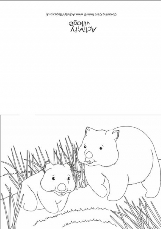 Wombat coloring #18, Download drawings