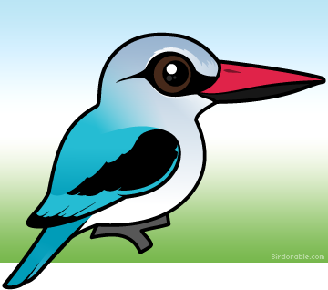 Woodland Kingfisher clipart #16, Download drawings