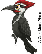 Woodpecker clipart #16, Download drawings