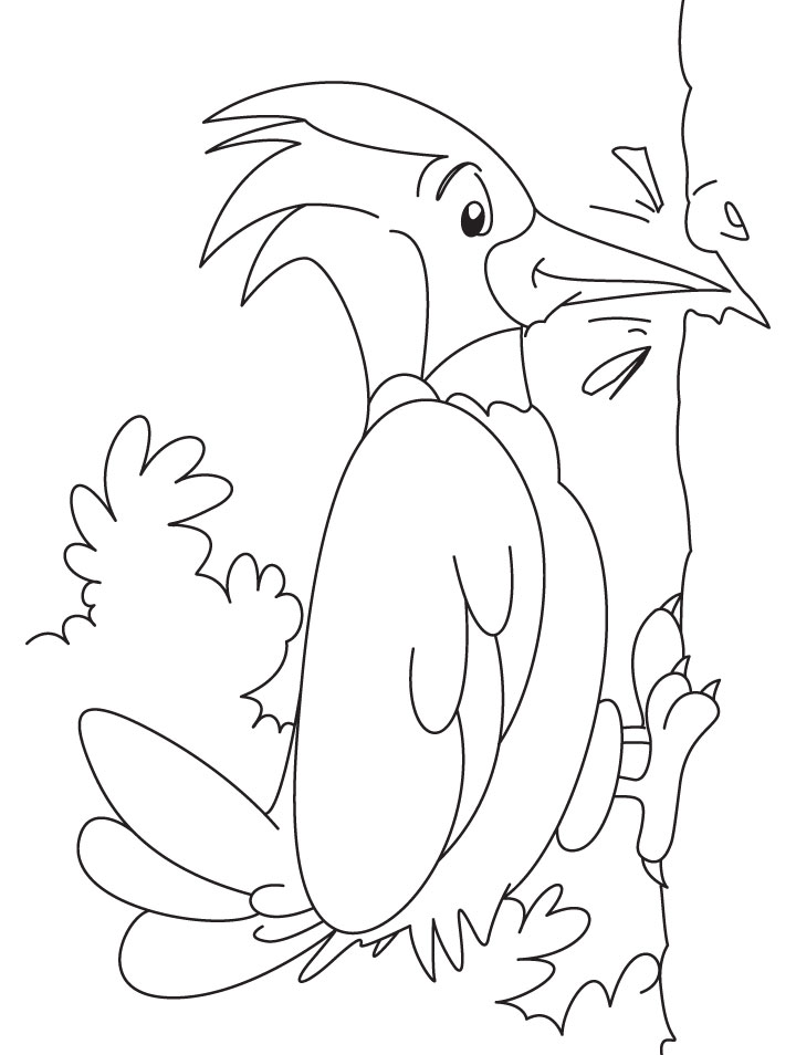 Woodpecker coloring #16, Download drawings