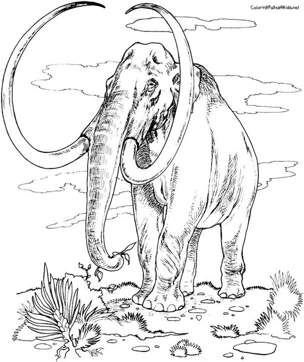 Woolly Mammoth coloring #18, Download drawings