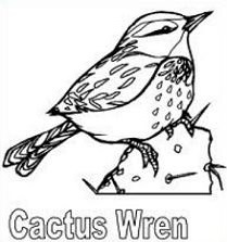 Wren clipart #12, Download drawings